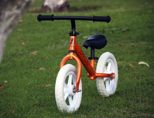 5 Reasons why every 2 year old should get a balance bike.